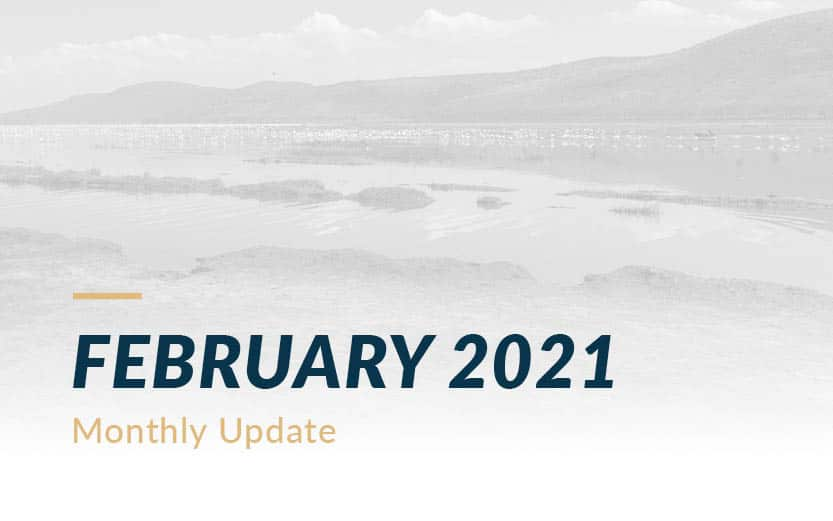 February 2021 Davar Monthly Update